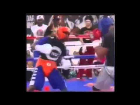 Floyd Mayweather Jr. Footage Sparring For His Fight In Sept 2015 !! Who Will He Choose ??