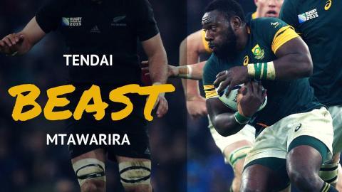 Best Of The Beast   Tendai Mtawarira Career Highlights
