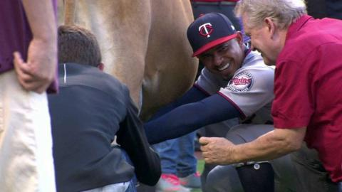 MIN@LAA: Escobar takes on the cow milking contest