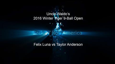 2016 Tiger Tour Winter 9 Ball Open Felix Luna vs Taylor Anderson