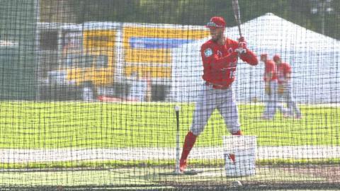 Spring Training First Look: Jordan Schafer