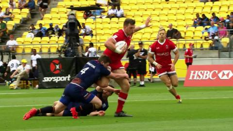 Seven epic players make Wellington Dream Team