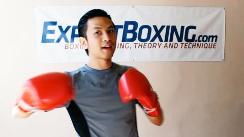 Flexibility in Learning How to Fight