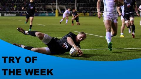 Citizen Try of the Week - Round 8 - Gallagher, Tait, Wilson, Williams & Spencer