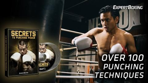 SECRETS to Punching Power (30-DAY Intensive Training Program)