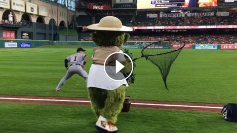 Astros Mascot >> Astros Mascot Orbit Comes Up Short While Tiger Hunting
